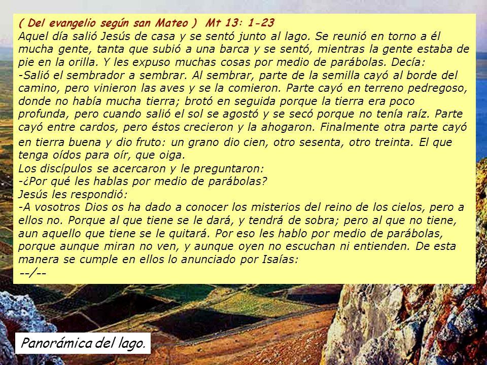 Panorámica del lago. ( Del evangelio según san Mateo ) Mt 13: 1-23