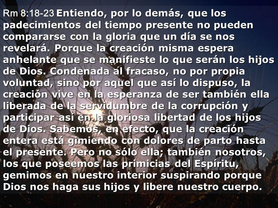 Rm 8:18-23 Entiendo, por lo demás, que los padecimientos del tiempo presente no pueden compararse con la gloria que un día se nos revelará.