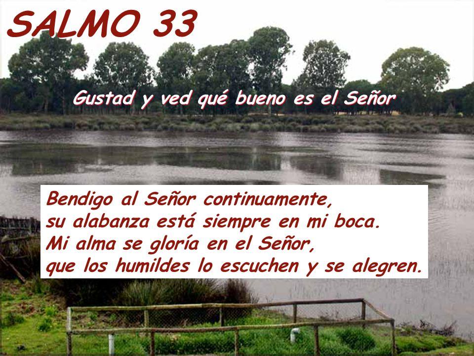 SALMO 33 Gustad y ved qué bueno es el Señor