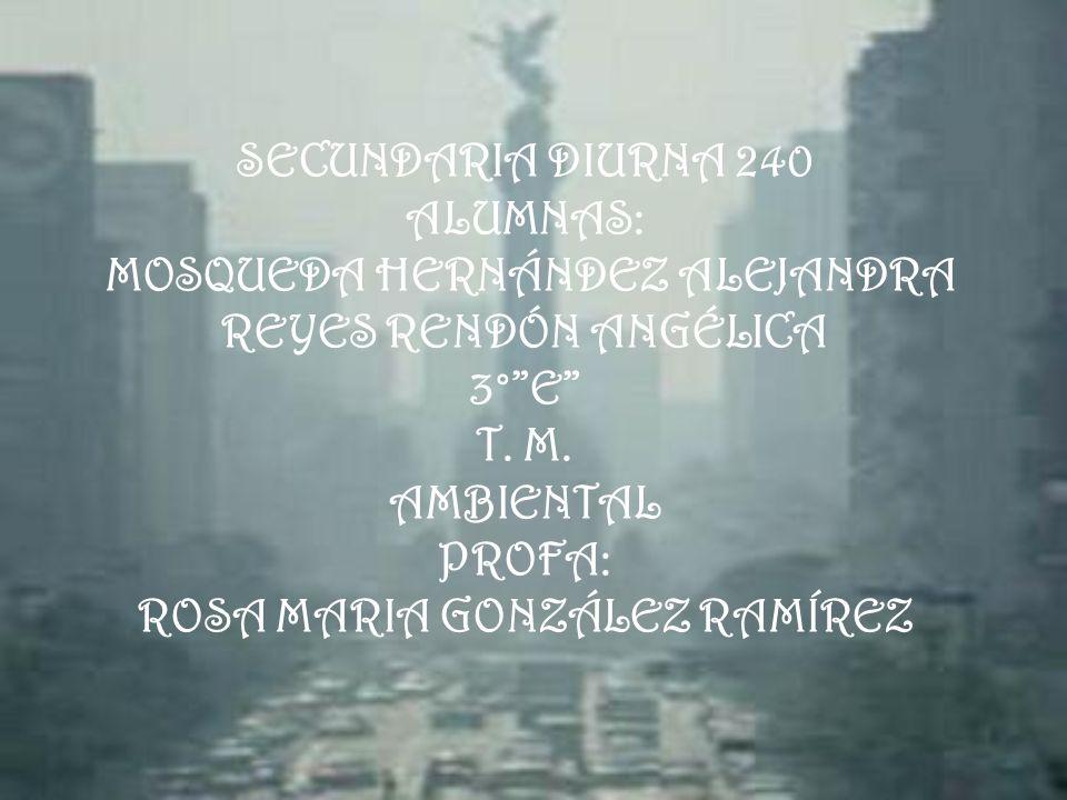 SECUNDARIA DIURNA 240 ALUMNAS: MOSQUEDA HERNÁNDEZ ALEJANDRA REYES RENDÓN ANGÉLICA 3° E T.