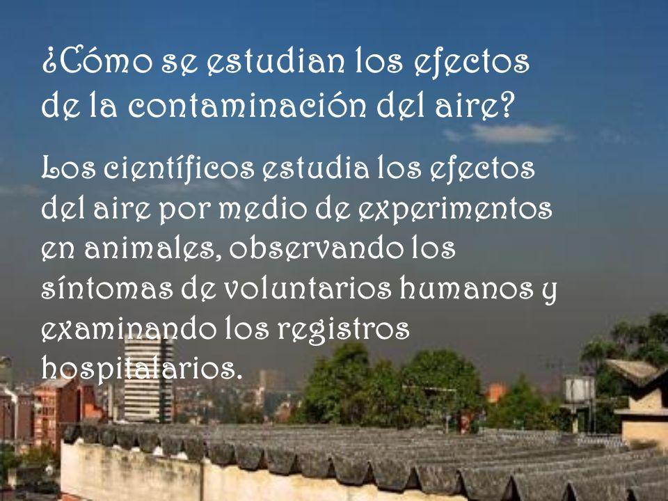 ¿Cómo se estudian los efectos de la contaminación del aire