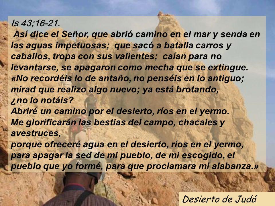 Is 43;16-21. Así dice el Señor, que abrió camino en el mar y senda en las aguas impetuosas; que sacó a batalla carros y caballos, tropa con sus valientes; caían para no levantarse, se apagaron como mecha que se extingue.