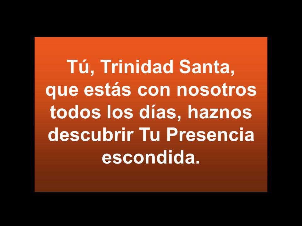 Tú, Trinidad Santa, que estás con nosotros todos los días, haznos descubrir Tu Presencia escondida.