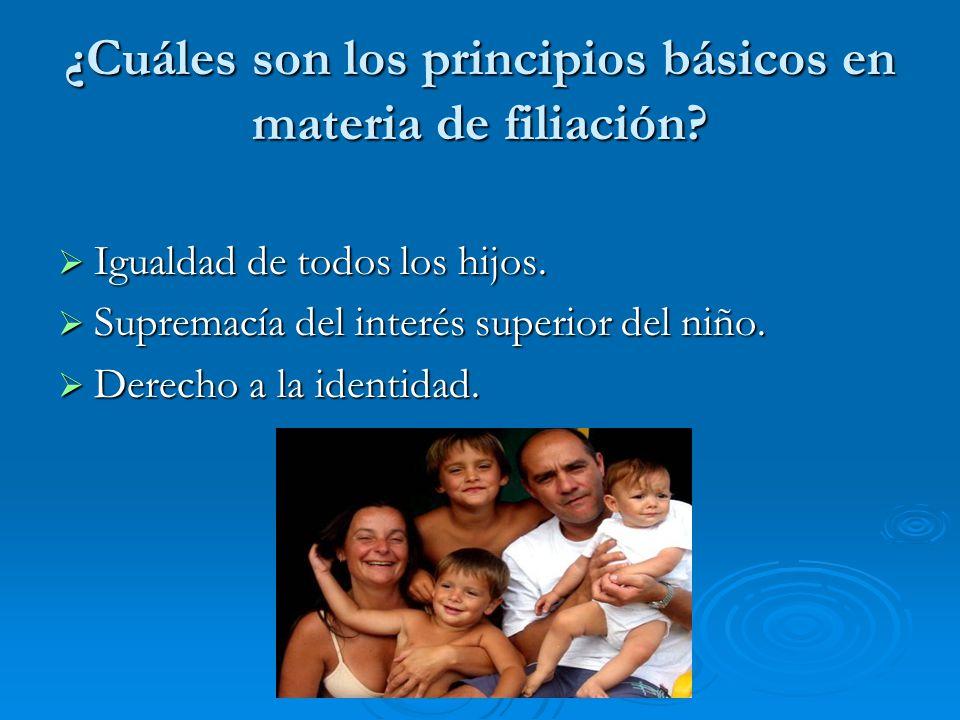 ¿Cuáles son los principios básicos en materia de filiación