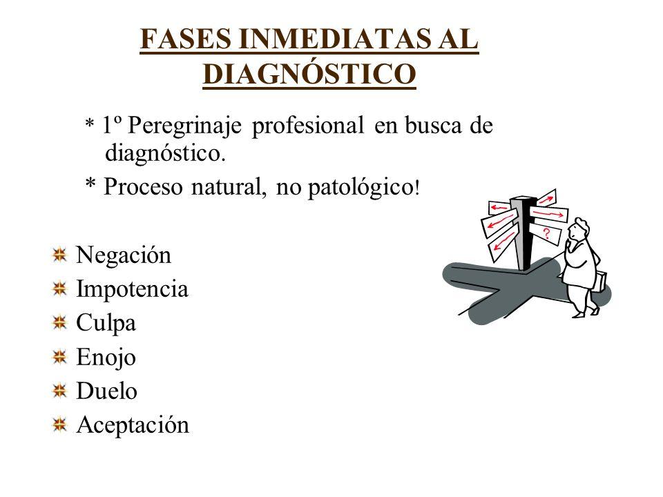 FASES INMEDIATAS AL DIAGNÓSTICO