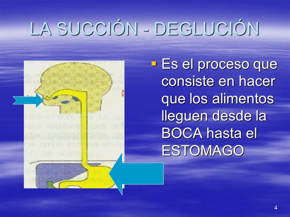 LA SUCCIÓN - DEGLUCIÓN Es el proceso que consiste en hacer que los alimentos lleguen desde la BOCA hasta el ESTOMAGO.