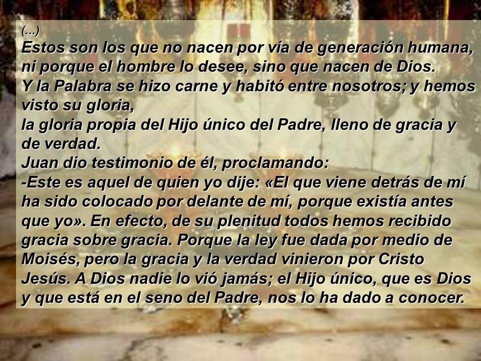 (...) Estos son los que no nacen por vía de generación humana, ni porque el hombre lo desee, sino que nacen de Dios.