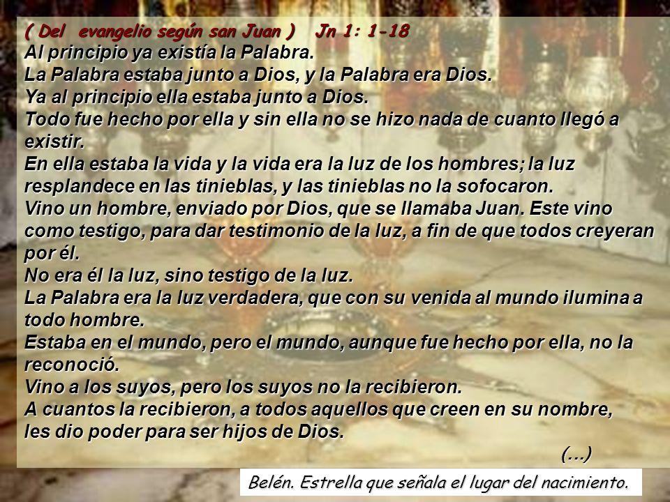 ( Del evangelio según san Juan ) Jn 1: 1-18