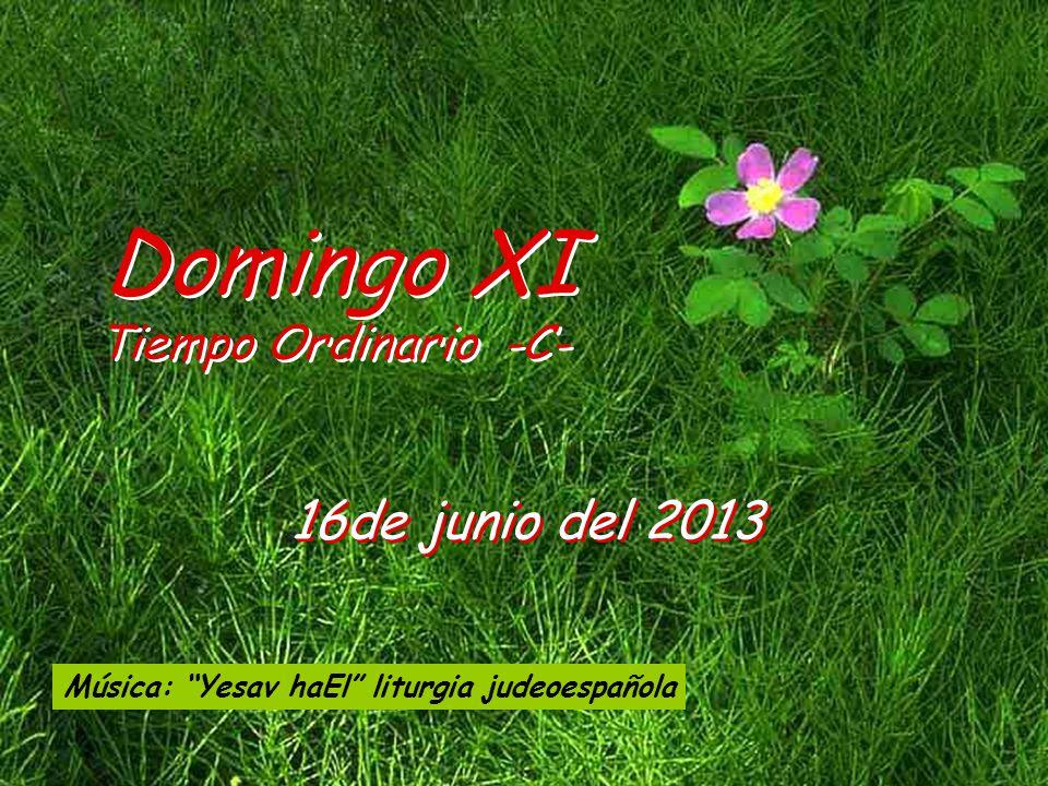 Domingo XI 16de junio del 2013 Tiempo Ordinario -C-