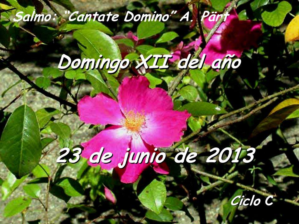 23 de junio de 2013 Domingo XII del año
