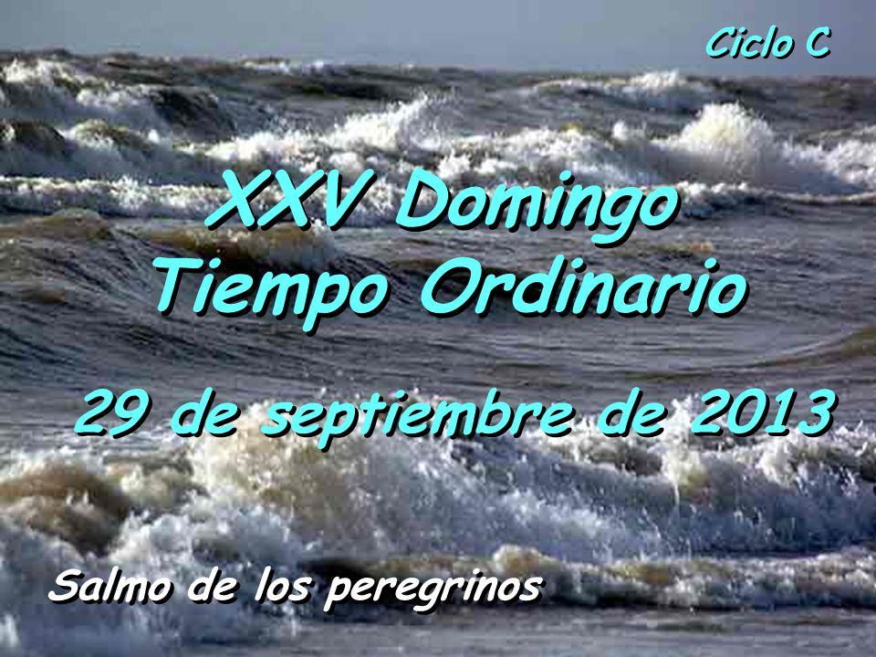 XXV Domingo Tiempo Ordinario Salmo de los peregrinos
