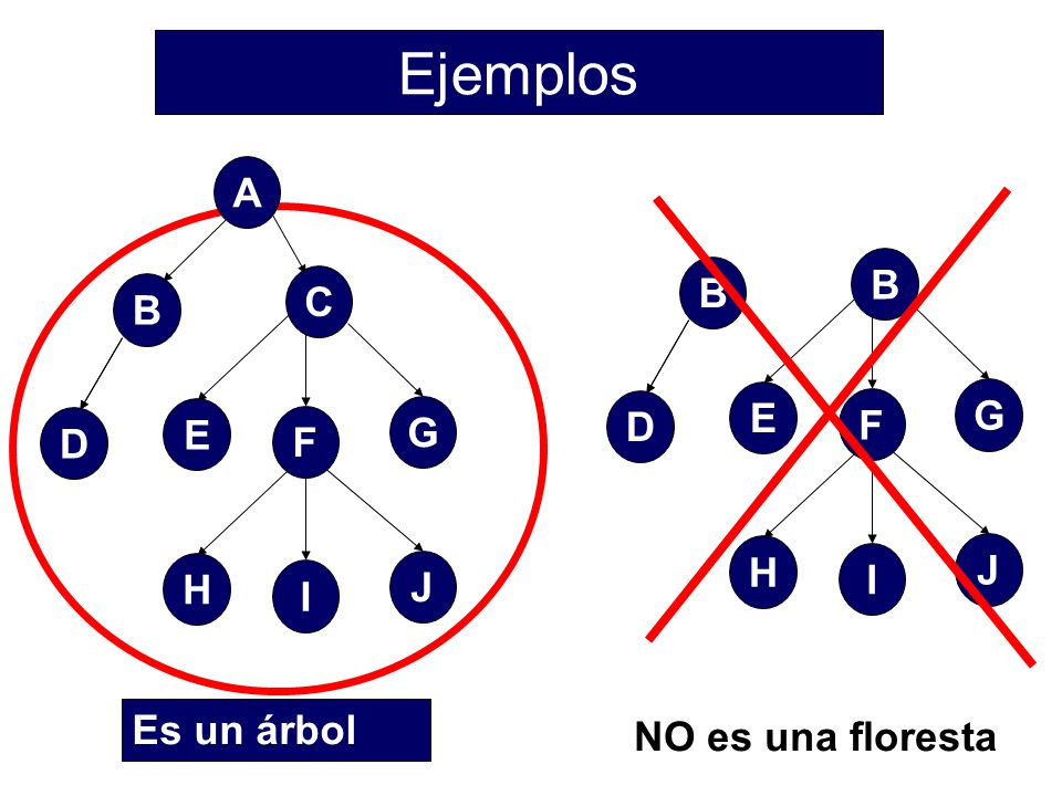 Ejemplos A B C B E G D F E G D F H J I H J I Es un árbol