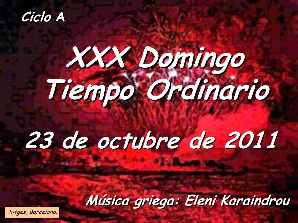 XXX Domingo Tiempo Ordinario
