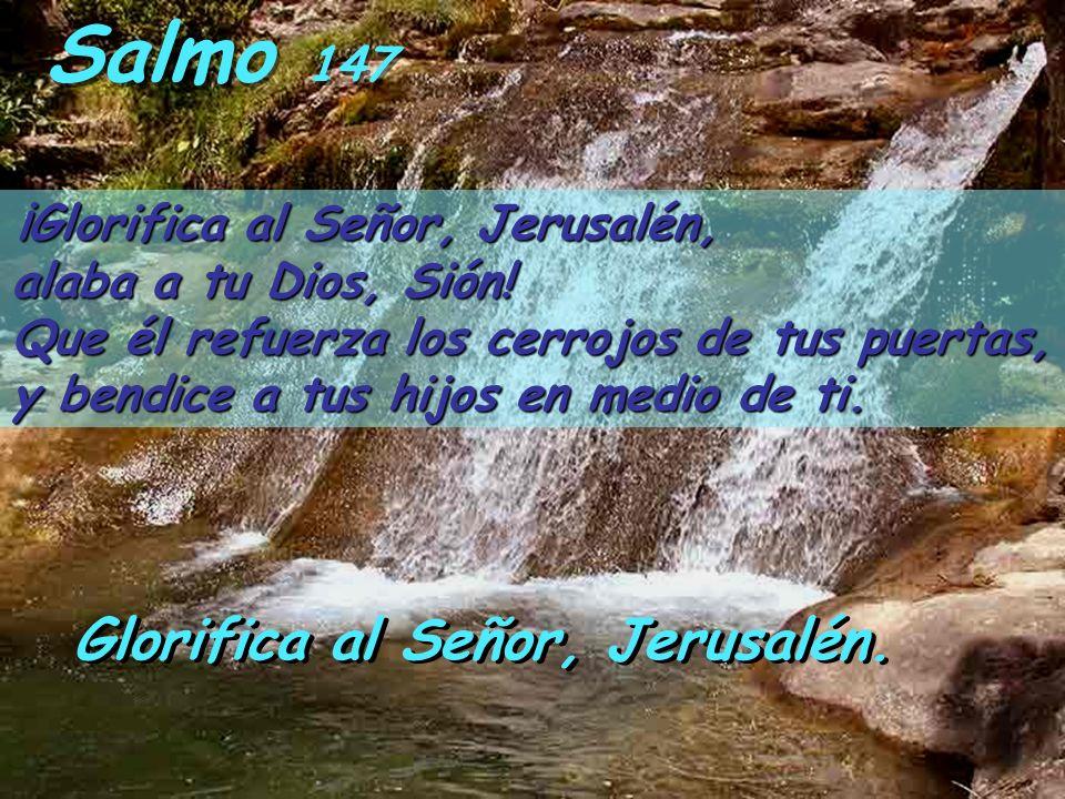 Salmo 147 Glorifica al Señor, Jerusalén.