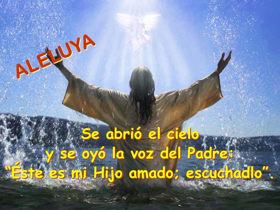 y se oyó la voz del Padre: Éste es mi Hijo amado; escuchadlo .