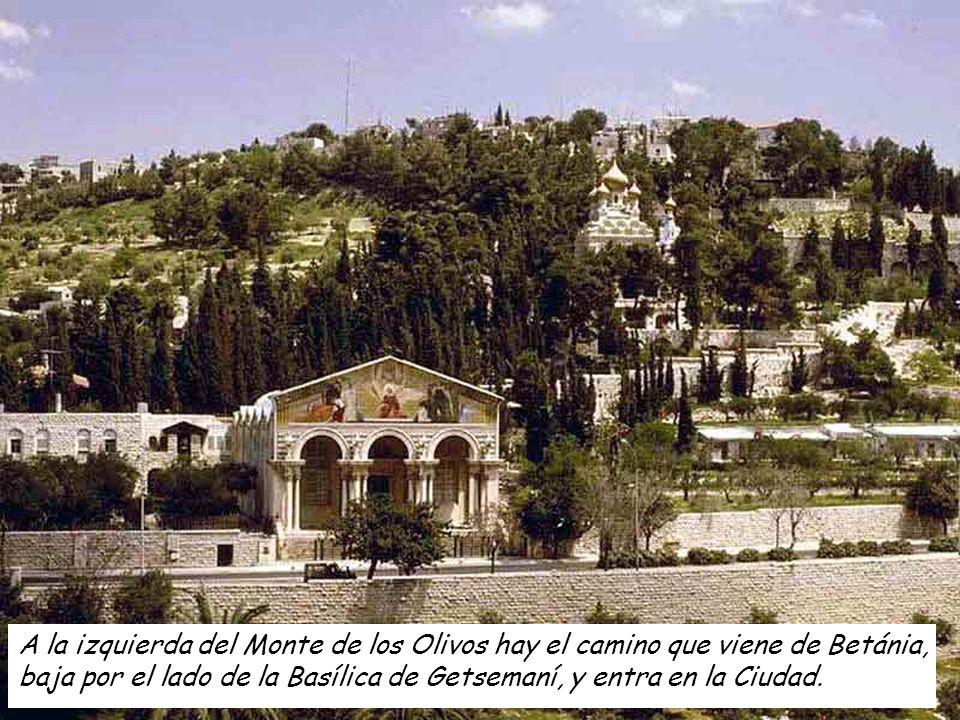 A la izquierda del Monte de los Olivos hay el camino que viene de Betánia,