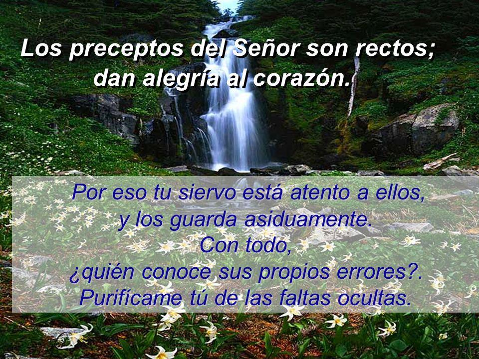 Los preceptos del Señor son rectos;