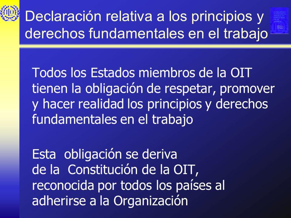 Declaración relativa a los principios y derechos fundamentales en el trabajo