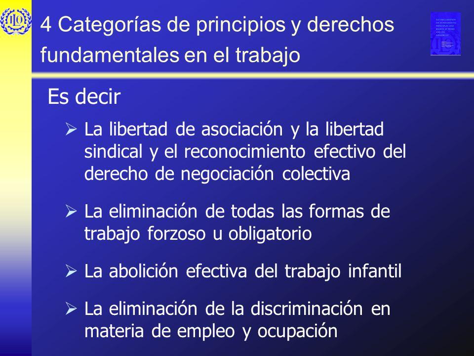 4 Categorías de principios y derechos fundamentales en el trabajo