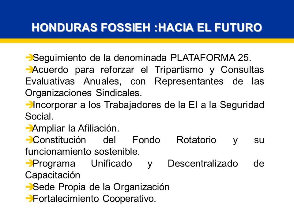 HONDURAS FOSSIEH :HACIA EL FUTURO