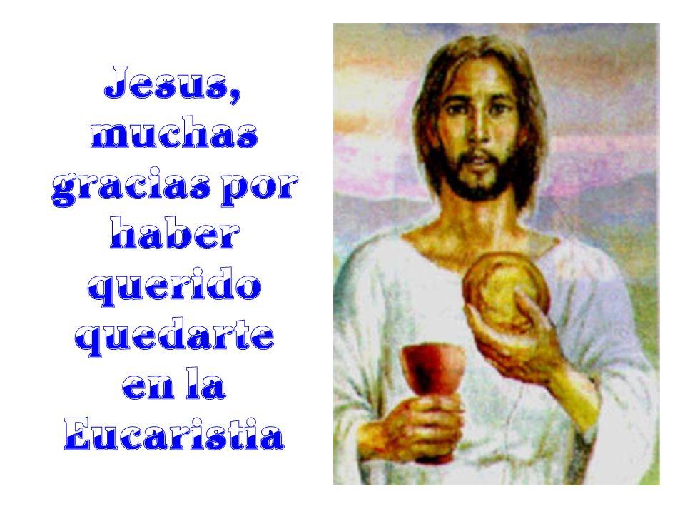 Jesus, muchas gracias por haber querido quedarte en la Eucaristia