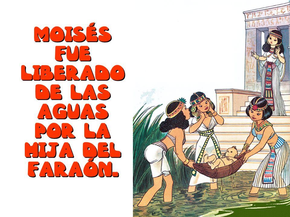 Moisés fue liberado de las aguas por la hija del faraón.
