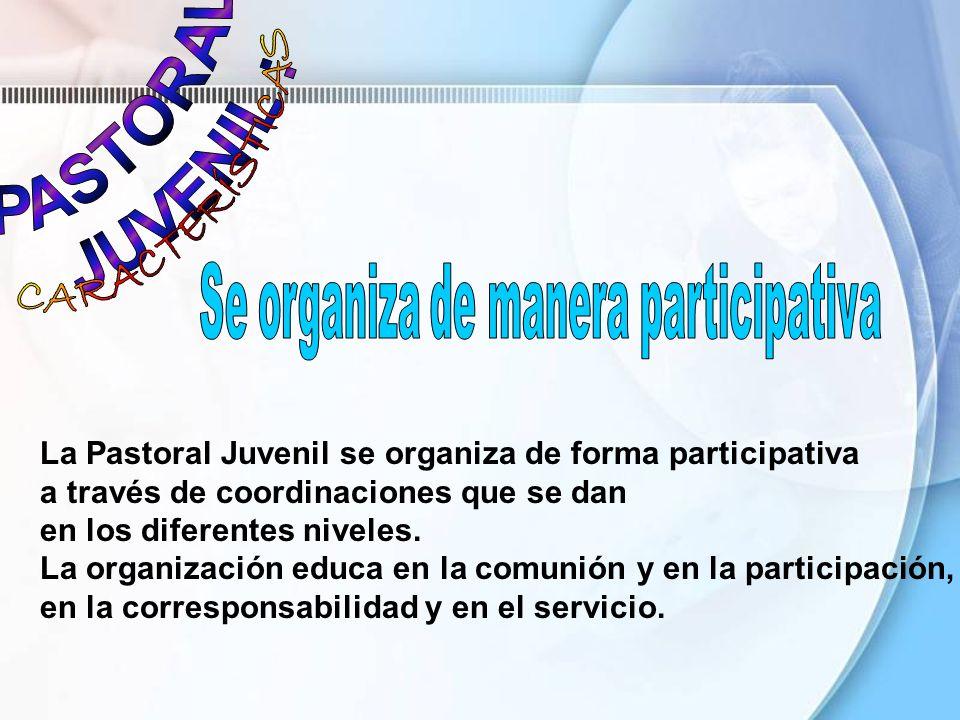 Se organiza de manera participativa