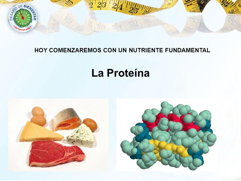 Reto de Pérdida de Peso La Proteína