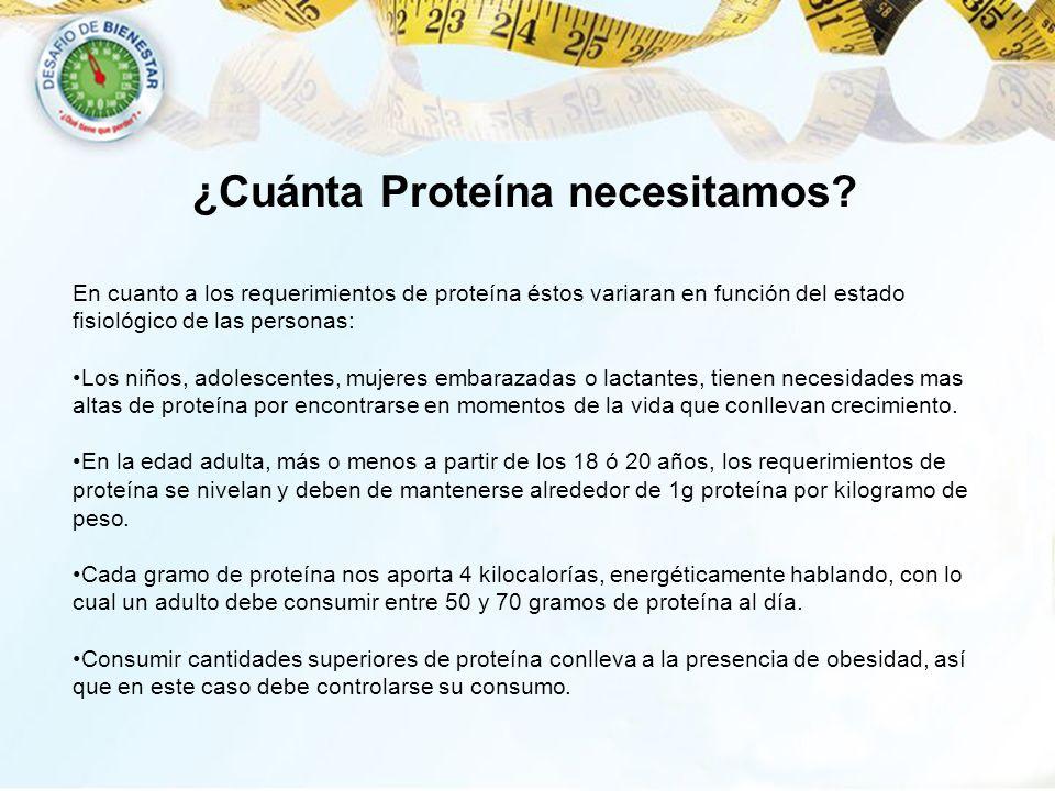 ¿Cuánta Proteína necesitamos