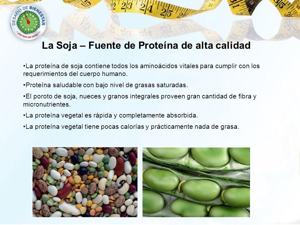 La Soja – Fuente de Proteína de alta calidad