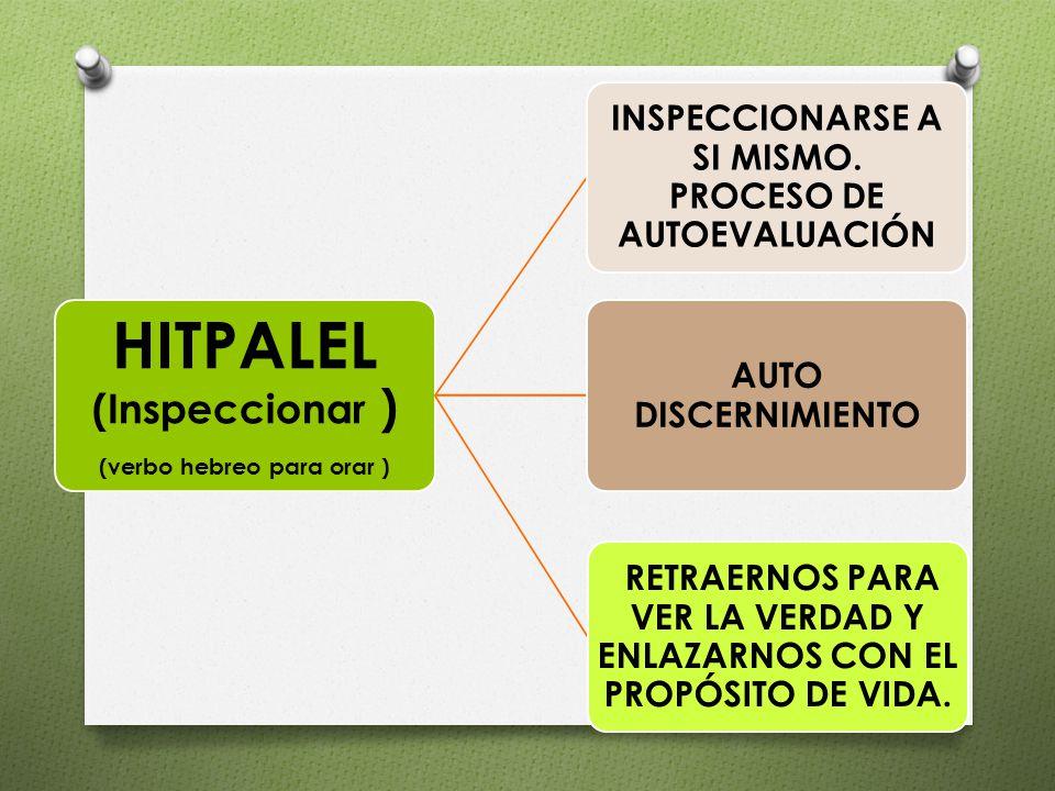 HITPALEL (Inspeccionar )