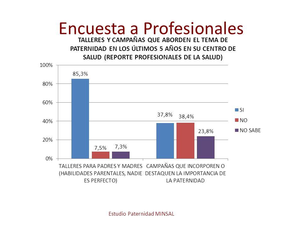 Encuesta a Profesionales