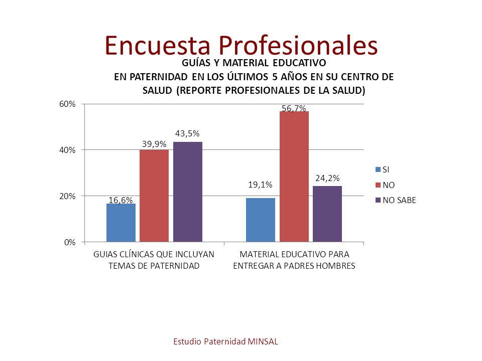 Encuesta Profesionales