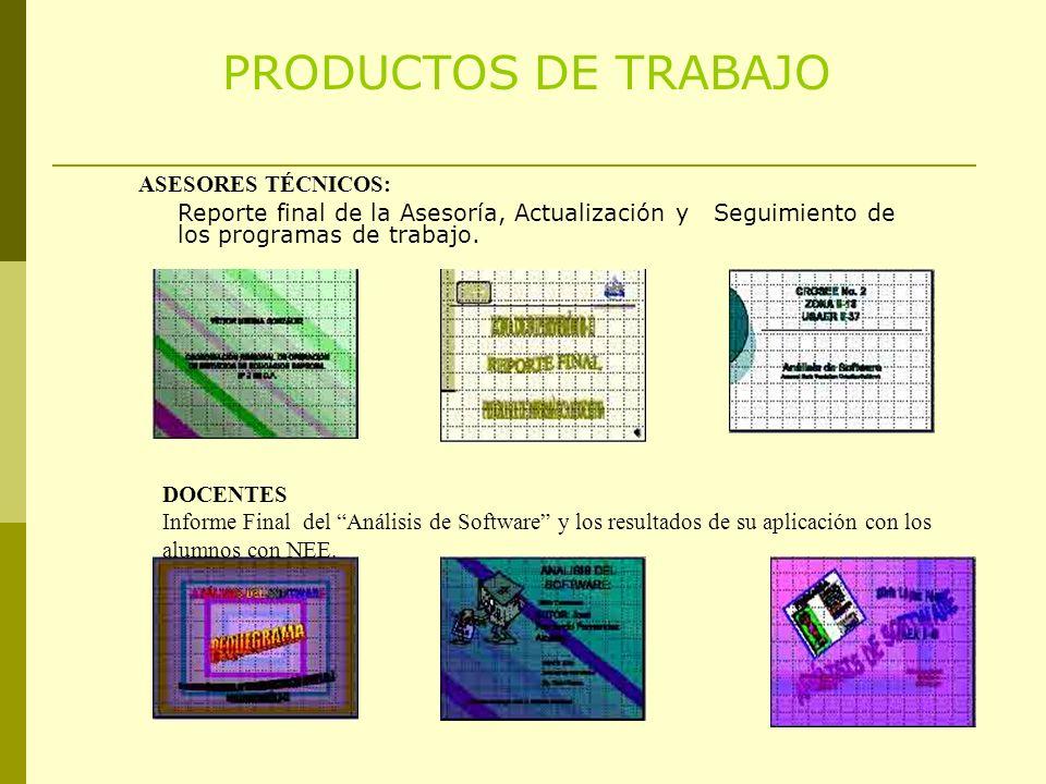 PRODUCTOS DE TRABAJO ASESORES TÉCNICOS: DOCENTES