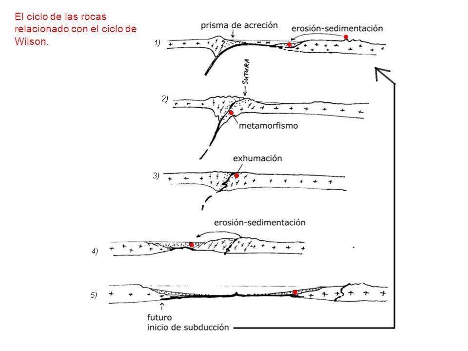 El ciclo de las rocas relacionado con el ciclo de Wilson.