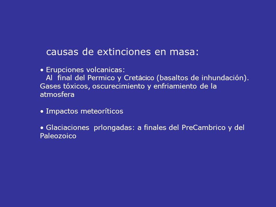 causas de extinciones en masa: