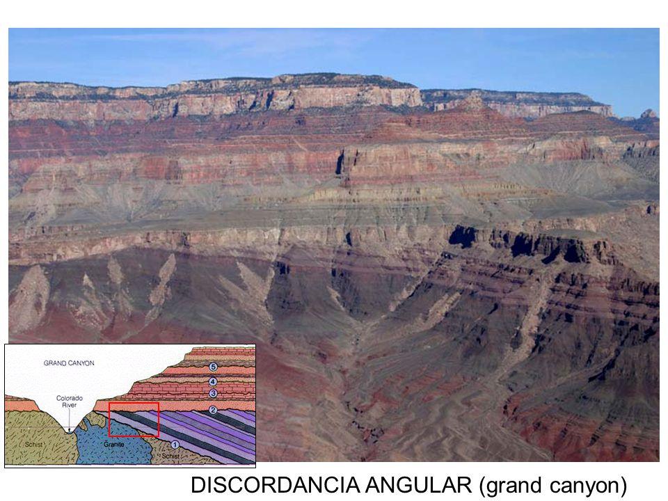 DISCORDANCIA ANGULAR (grand canyon)