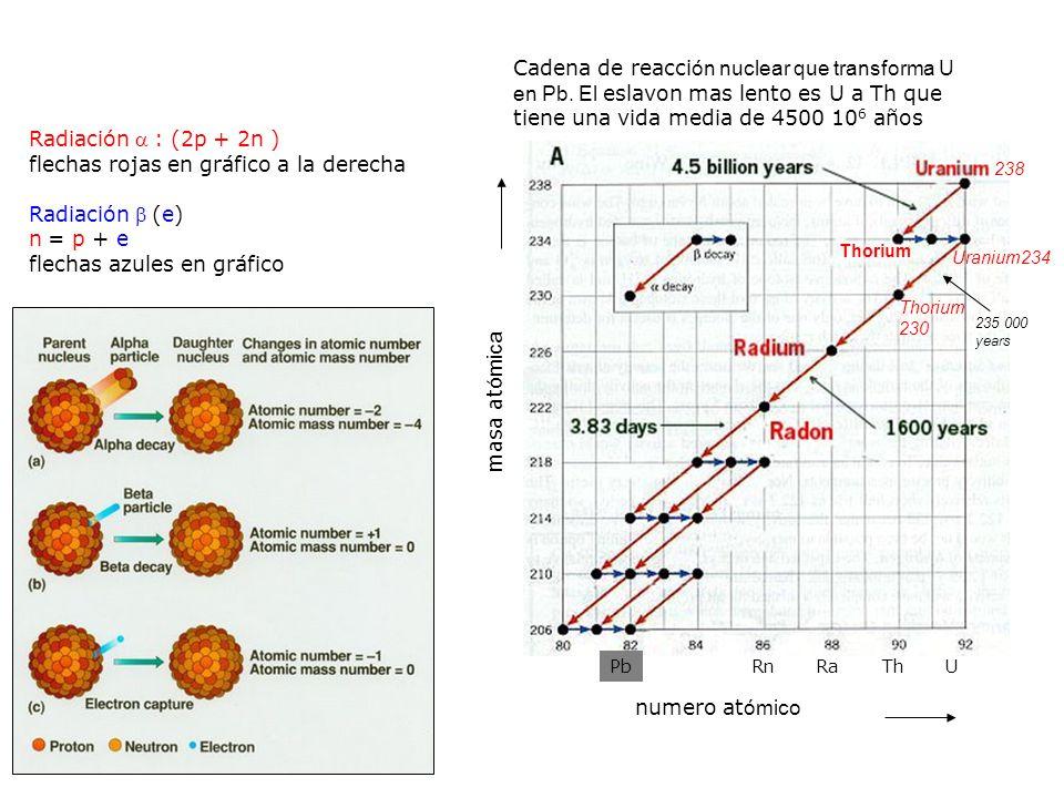 flechas rojas en gráfico a la derecha Radiación (e) n = p + e
