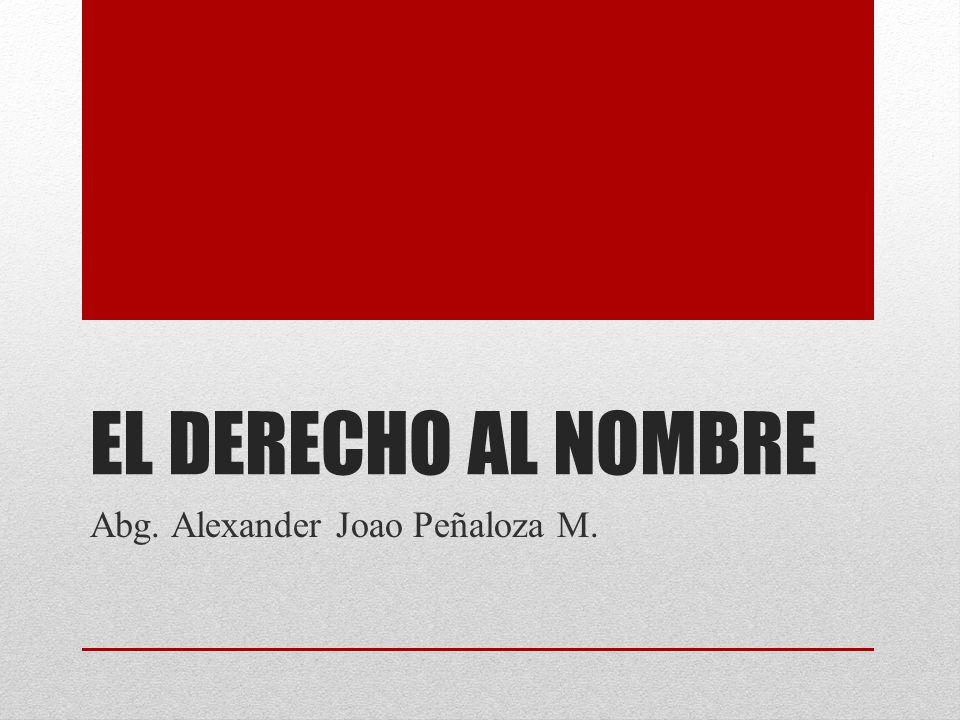 Abg. Alexander Joao Peñaloza M.
