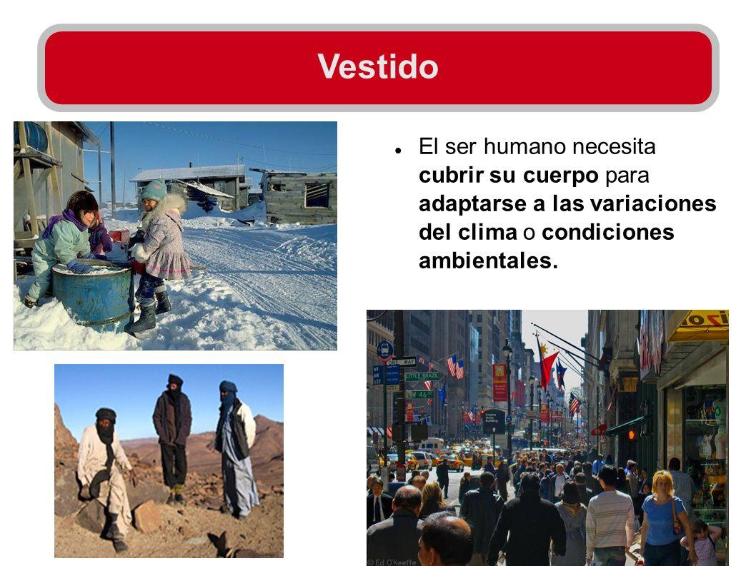 Vestido El ser humano necesita cubrir su cuerpo para adaptarse a las variaciones del clima o condiciones ambientales.