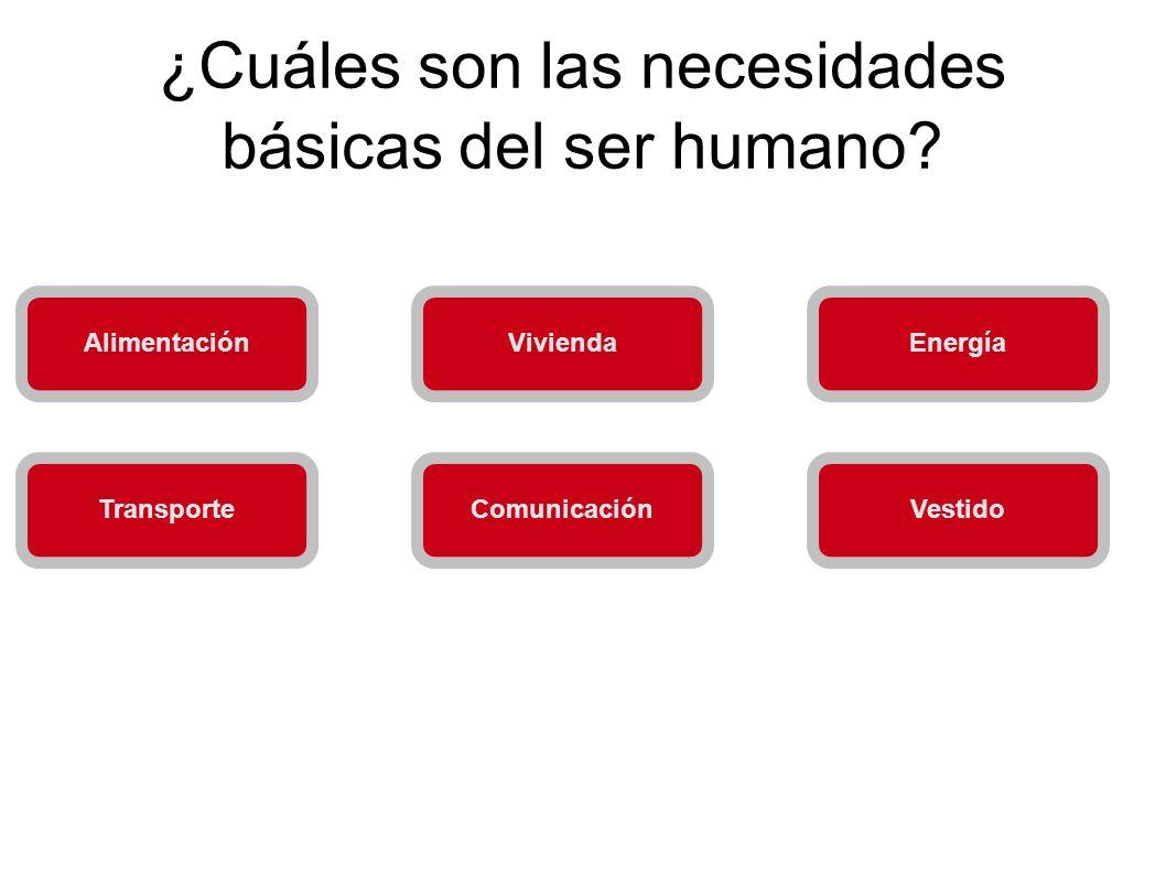 ¿Cuáles son las necesidades básicas del ser humano