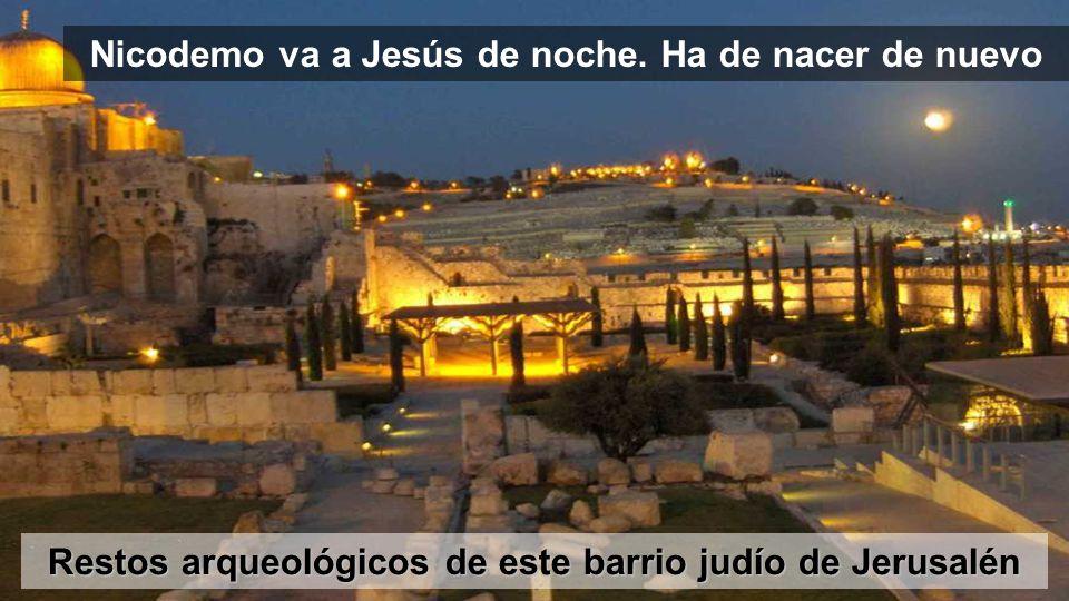Nicodemo va a Jesús de noche. Ha de nacer de nuevo