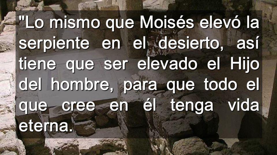 Lo mismo que Moisés elevó la serpiente en el desierto, así tiene que ser elevado el Hijo del hombre, para que todo el que cree en él tenga vida eterna.