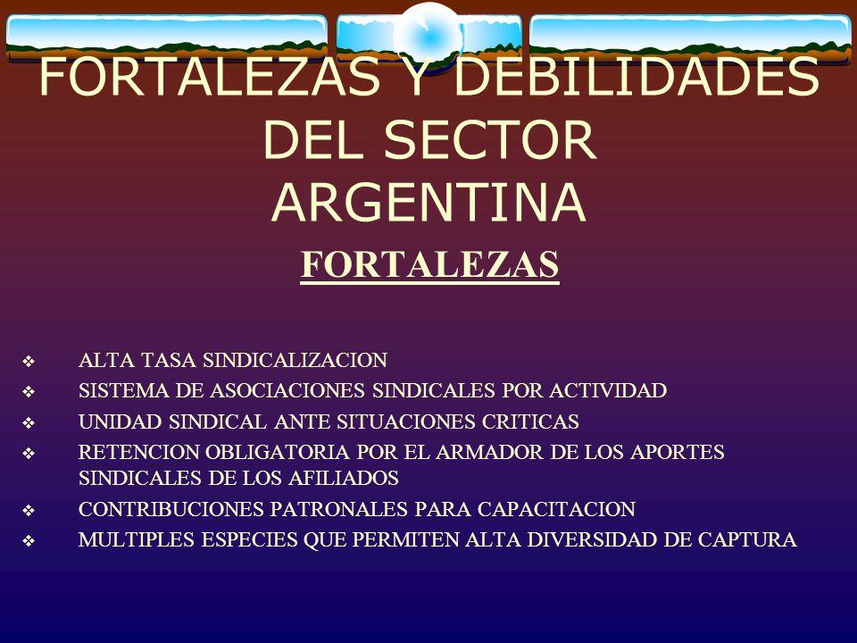 FORTALEZAS Y DEBILIDADES DEL SECTOR ARGENTINA