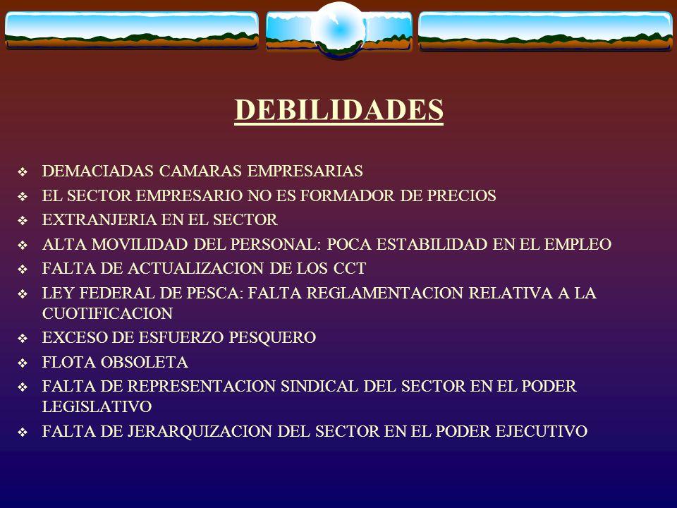 DEBILIDADES DEMACIADAS CAMARAS EMPRESARIAS