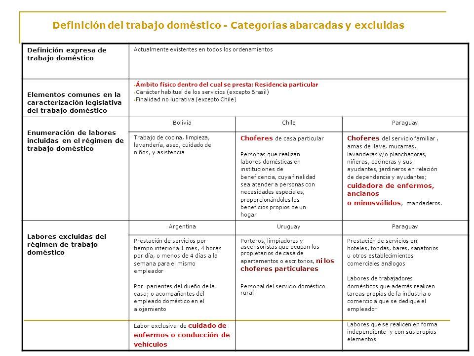 Definición del trabajo doméstico - Categorías abarcadas y excluidas