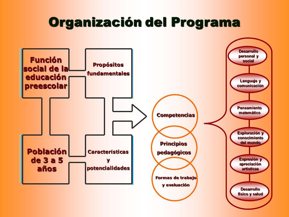 Organización del Programa