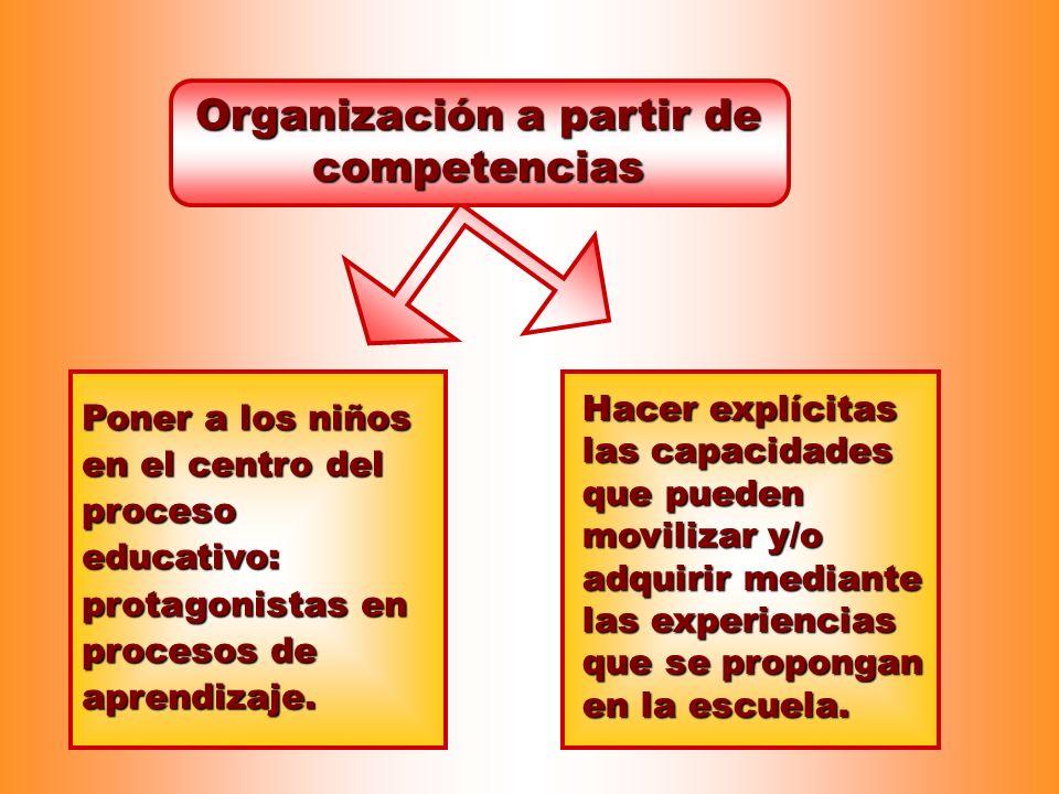 Organización a partir de competencias