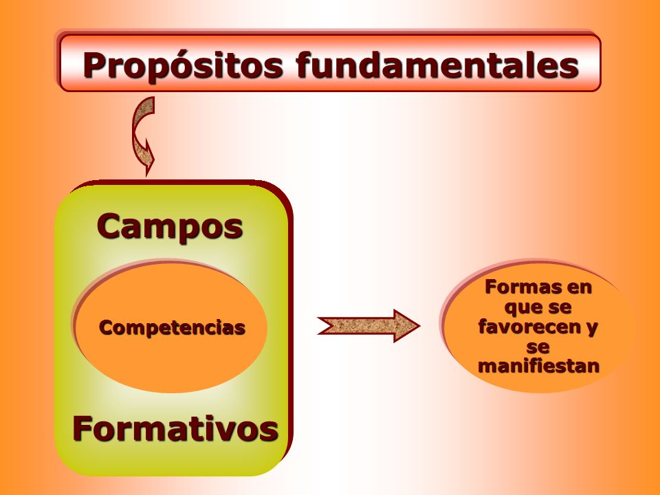 Propósitos fundamentales Formas en que se favorecen y se manifiestan