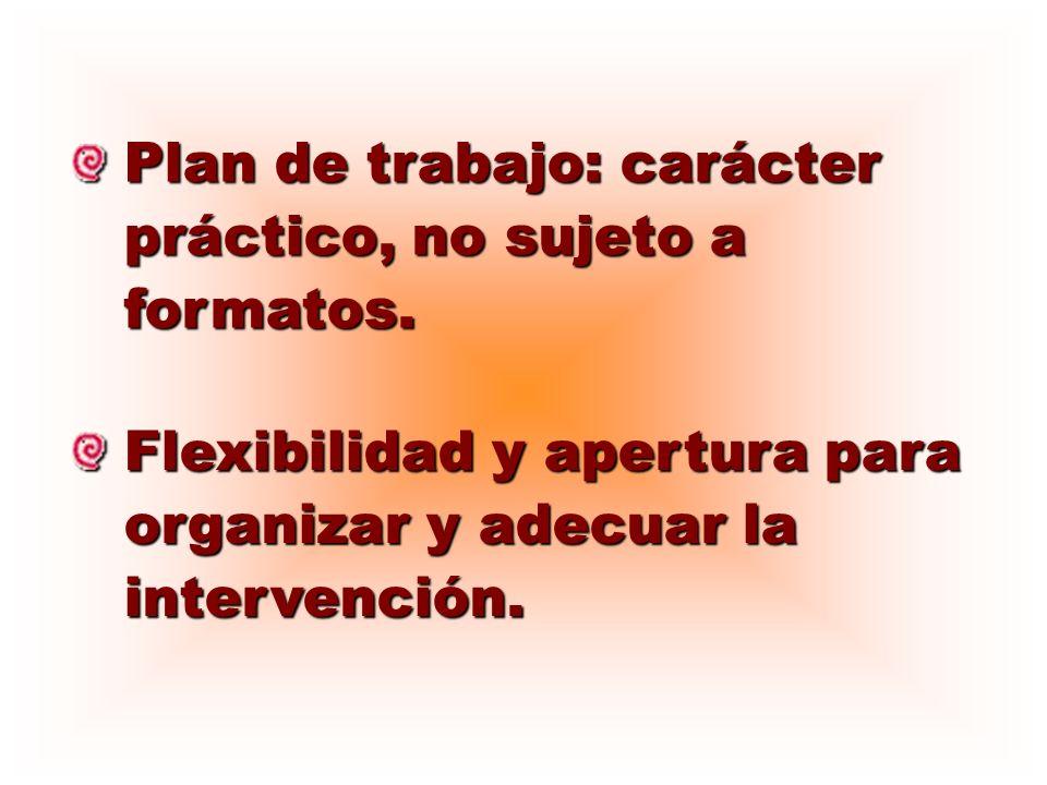 Plan de trabajo: carácter práctico, no sujeto a formatos.